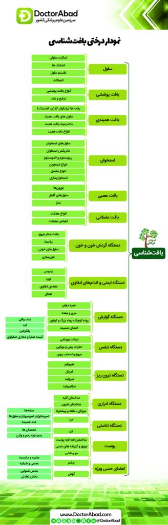 نمودار درختی بافت شناسی