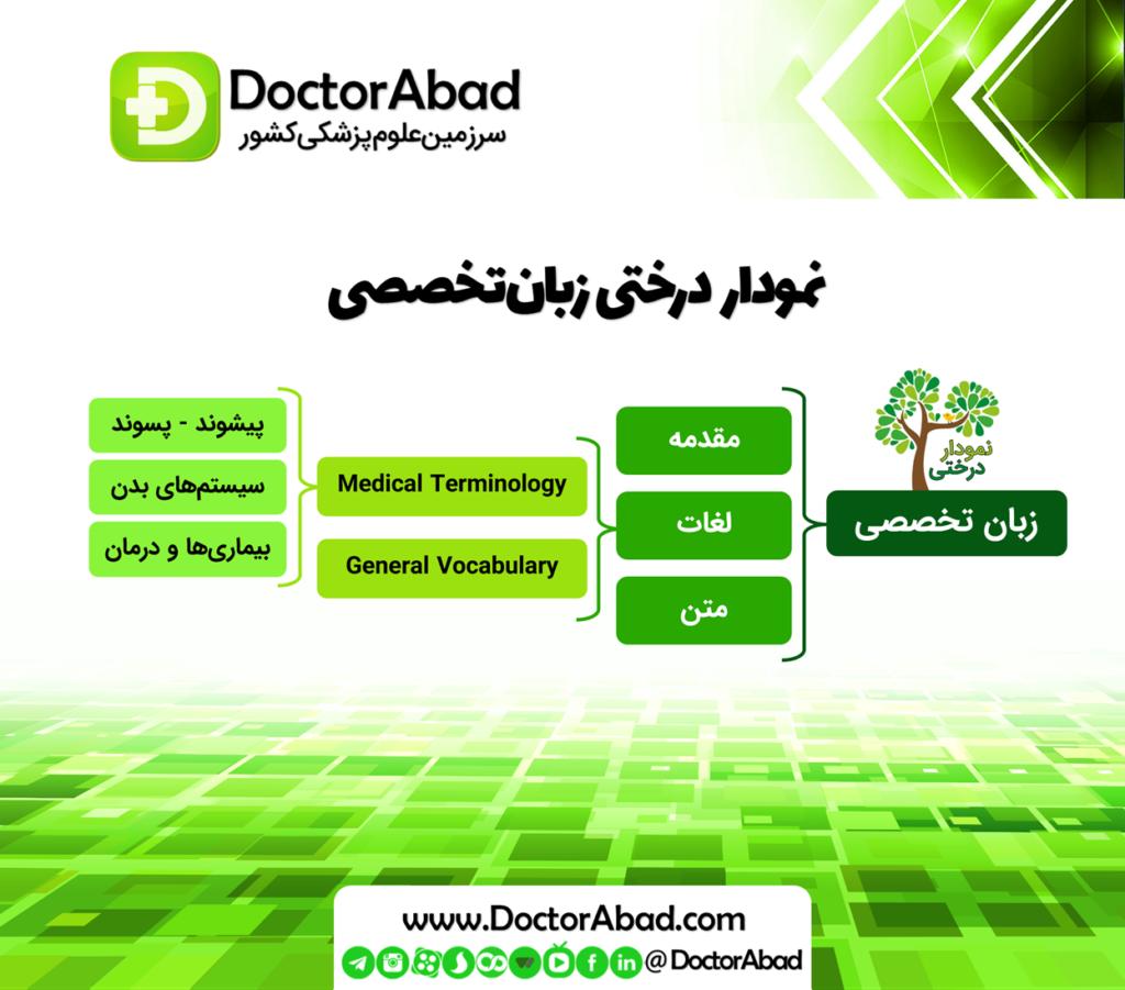 نمودار درختی زبان تخصصی