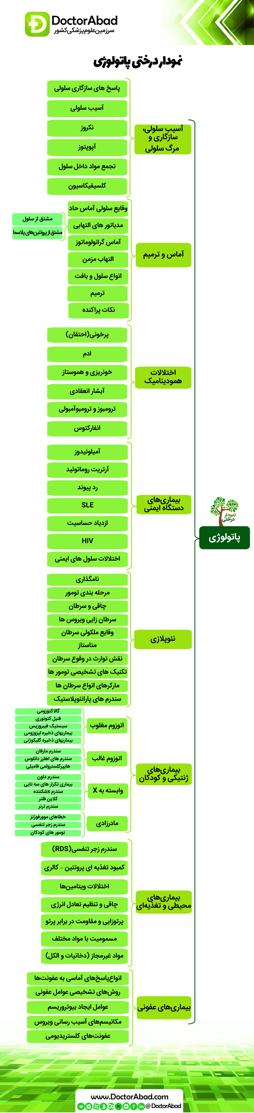 نمودار درختی پاتولوژی