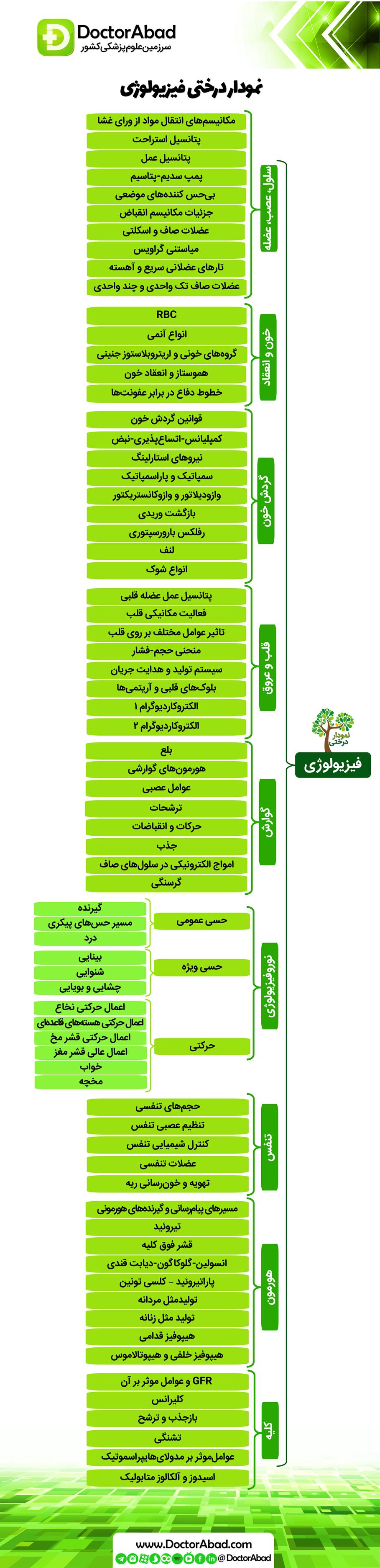 نمودار درختی فیزیولوژی