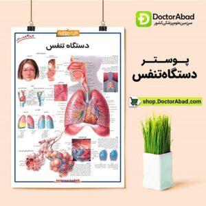 پوستر دستگاه تنفس