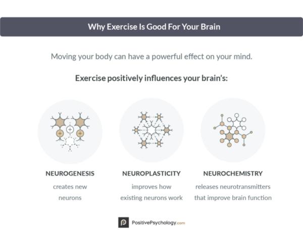 فایده نورولوژیکی ورزش